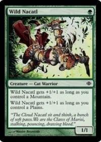 Wild Nacatl