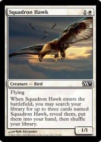 Squadron Hawk