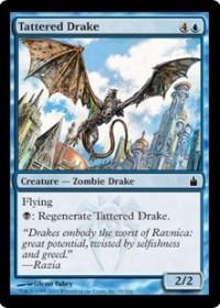 Tattered Drake