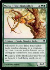 Matsu-Tribe Birdstalker