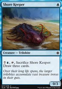 Shore Keeper