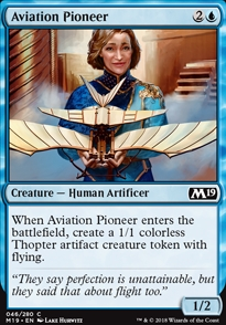 Aviation Pioneer