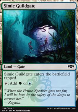 Simic Guildgate (b)