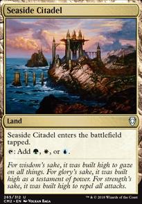Seaside Citadel