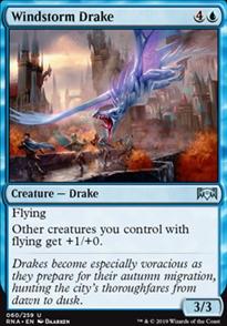 Windstorm Drake